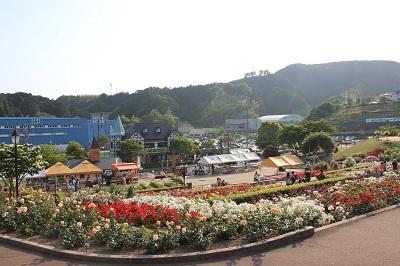 島田市ばらの丘公園(上からの眺め)