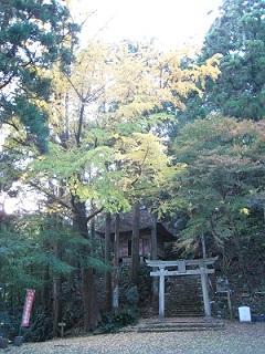 千葉山 智満寺(鳥居)