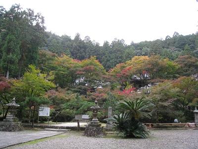 大洞院(紅葉)