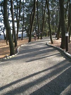 ディスカバリーパーク焼津(遊歩道)