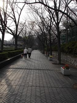 浜松城(駐車場からの道)