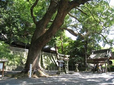 事任八幡宮(参道)