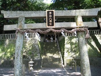 事任八幡宮(ご神木のクスノキ)
