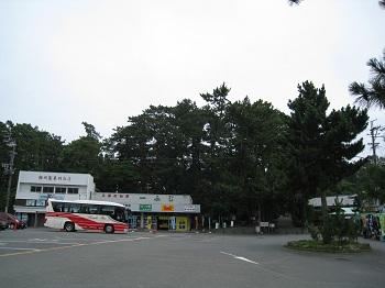 mihonomatsubara2