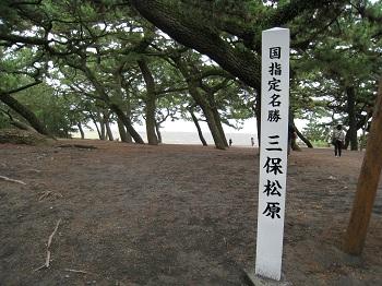 mihonomatsubara4