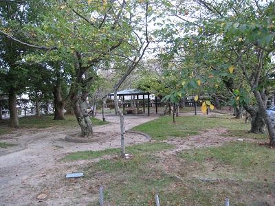 三熊野神社(公園)