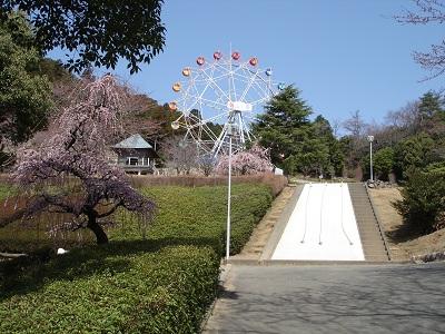 奥山高原(観覧車)