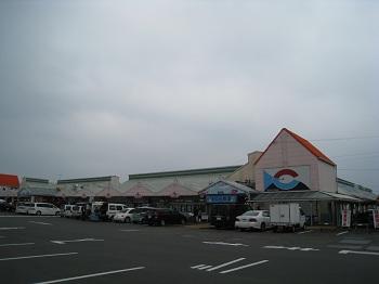 焼津さかなセンター(全景)