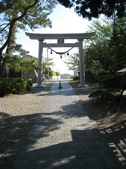 sakuragaike10