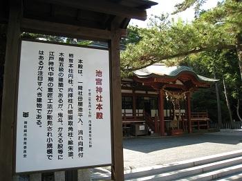 sakuragaike4