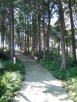石雲院(展望台への道)