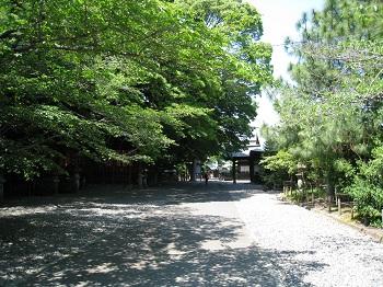 静岡浅間神社(並木道)