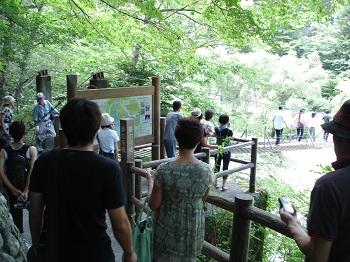 寸又峡(夢のつり橋・行列)