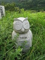 tannoikekoen_1000
