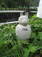 tannoikekoen_700