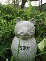 tannoikekoen_900