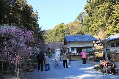 龍尾神社(梅園入口)