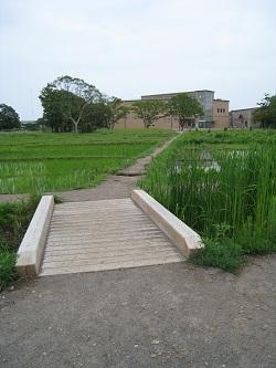 登呂遺跡(橋)