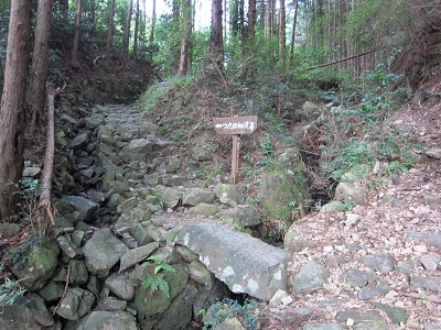 蔦の細道(道中)