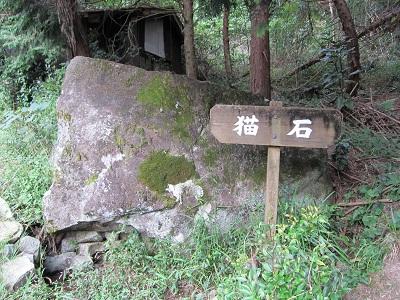 蔦の細道(猫石)