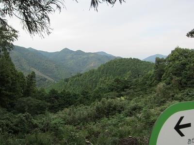 蔦の細道(山頂から静岡市側を望む)