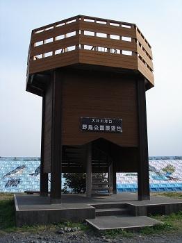 大井川河口野鳥園(展望台)