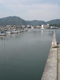 焼津港(港)