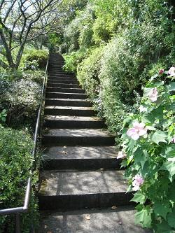 夜泣き石へ続く階段