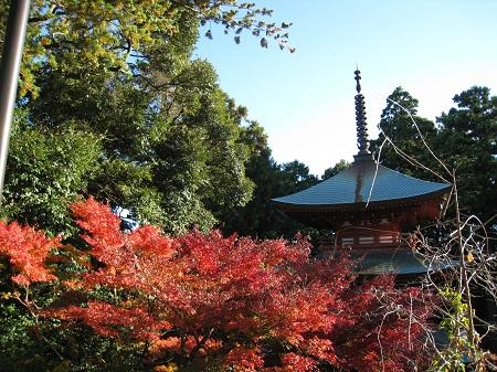 医王山 油山寺(三重塔と紅葉)