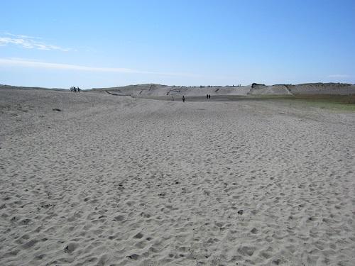 中田島砂丘(砂丘)