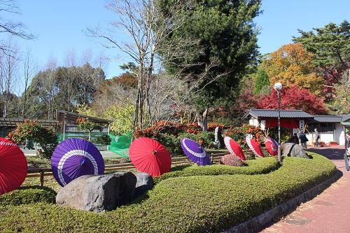 日本庭園の入口(修善寺虹の郷)
