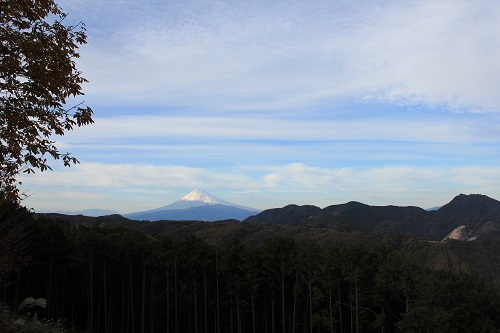 富士山(修善寺虹の郷)