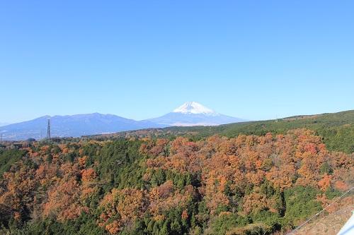 富士山を望む(三島スカイウォーク)