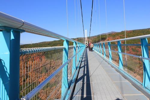 吊り橋の歩道(三島スカイウォーク)