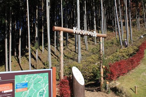 Kicoroの森(三島スカイウォーク)