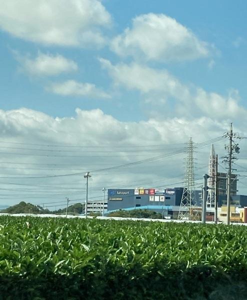 ららぽーと磐田と茶畑