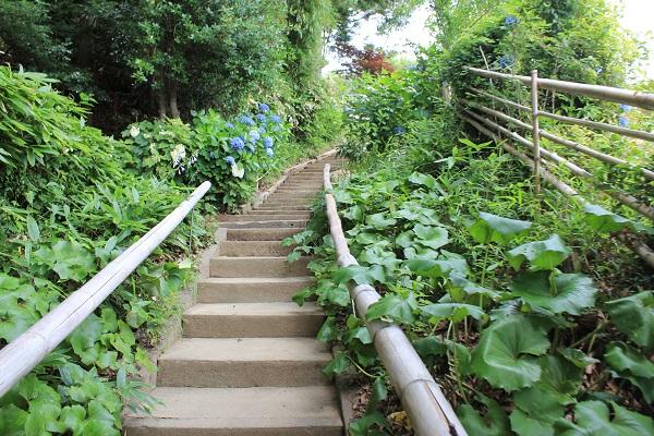 階段(香勝寺/ききょう寺)