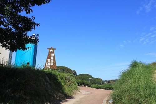 相良油田観光くり園(くり拾い場へ向かう道)