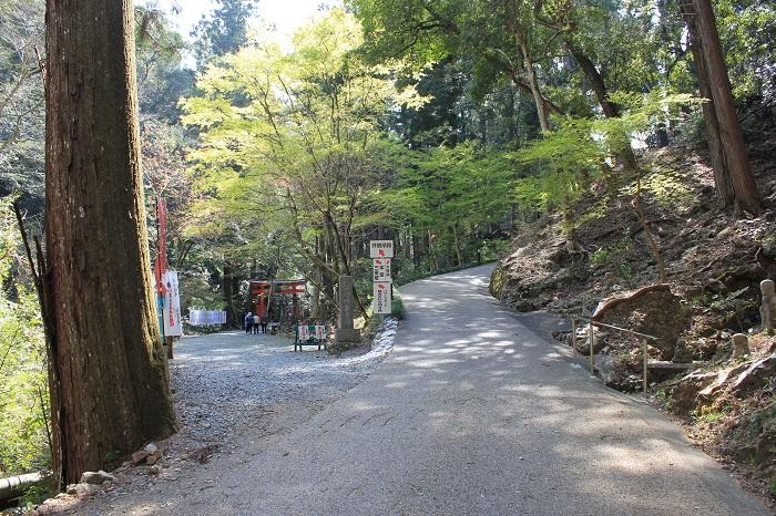 散策道(奥山方広寺)