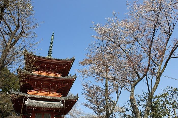 三重塔(奥山方広寺)