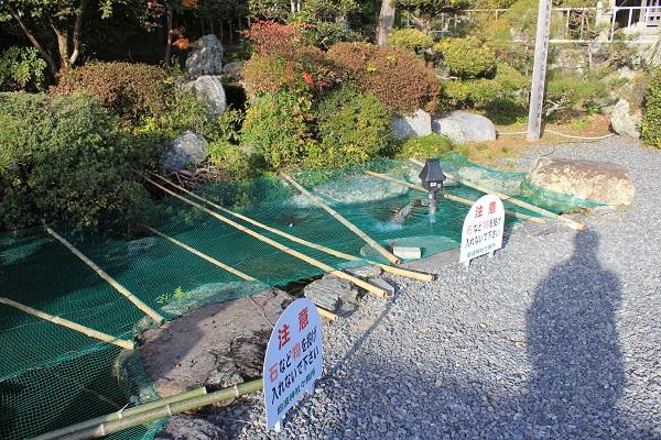 池(飽波神社)