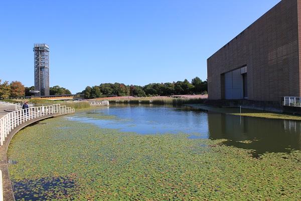 浜名湖ガーデンパーク(池と展望塔)