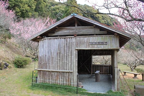相良梅園(お休み処)