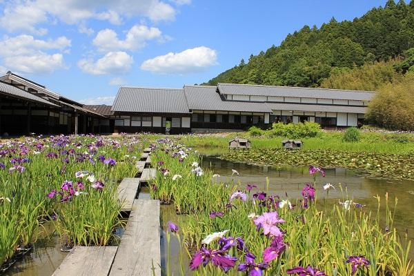 加茂荘花鳥園(菖蒲園と受付建屋)